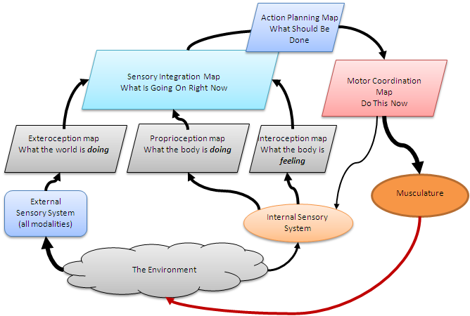 Behavior-map